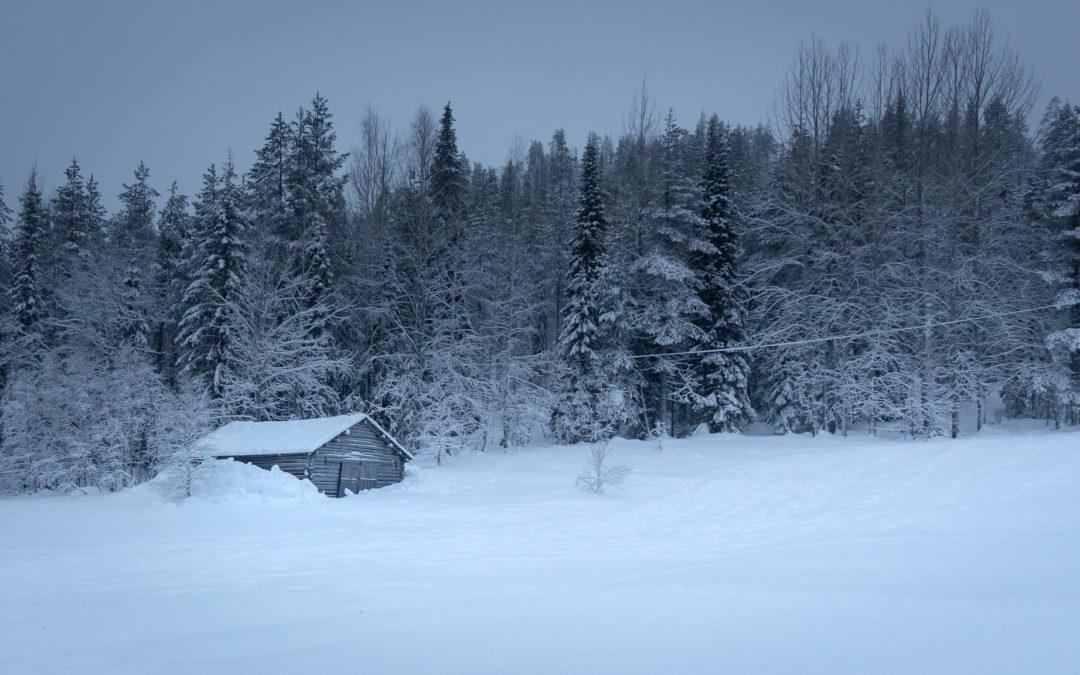 Aventures en Laponie, par Nadine